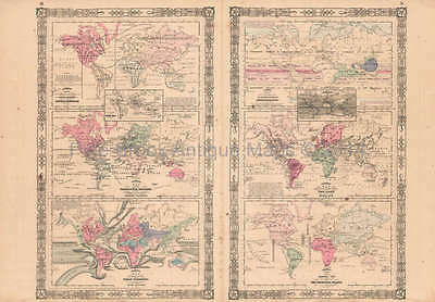 Animal Kingdom Vintage Map Johnson 1864 Original