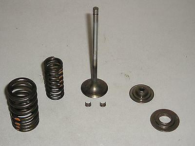 BMW K1200S exhaust valve c/w springs,collets,spring plates BMW Pt Nr11347684354