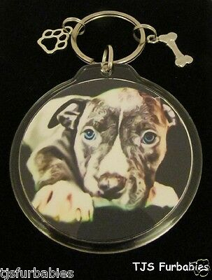 Blue Pit bull Dog Key chain Keychain Double Sided Great Pet Lovers Gift