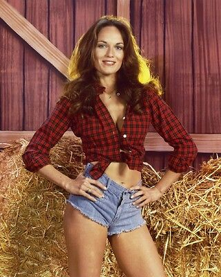 CATHERINE BACH DUKES OF HAZARD Poster B [Various Sizes]
