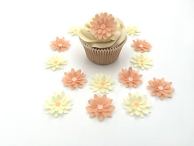 14 Edible Peach and Cream 3D Flowers Pre Cut Wafer Cupcake Toppers