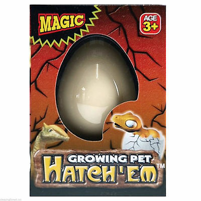 Magic Dino Eggs Growing Hatching Dinosaur Add Water Child Toy , NEW