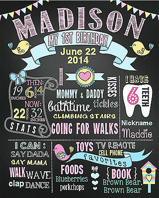 First Birthday Chalkboards sign birds pink mint 1st poster banner (43)