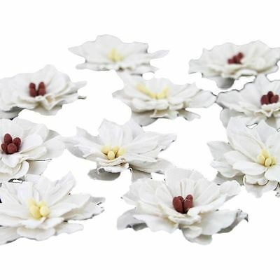 Hobbycraft White Paper Flowers Craft Embellishments Colours Card Making 10 Pack