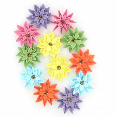 Hobbycraft Paper Flowers 12 Pieces Embellishments Petals Card Making D?cor