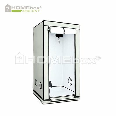 HOMEbox AMBIENT Q80 80 x 80 x 160cm Grow Eastside Impex Growbox Growschrank