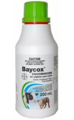 Bayer Baycox Cattle & Piglet Treatment of Coccidiosos 250ml, 50mg/mL Toltrazuril