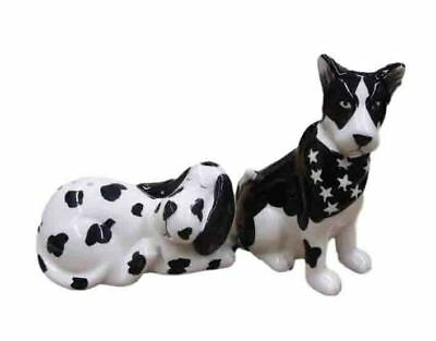 Collectable Novelty Salt and Pepper Set BORDER COLLIE DOGS Kitchen FREEPOST New