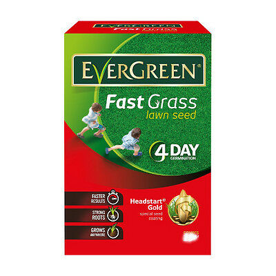 Evergreen Fast Grass Lawn Seed 15m2 plus 33% Free