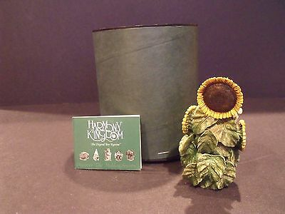 "Harmony Kingdom Royal Watch ""the Sunflower"" - #rw97Su - New In Box"