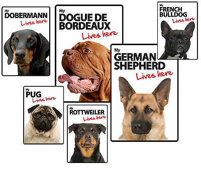 Dog Breed Lives Here Plastic Warning Signs