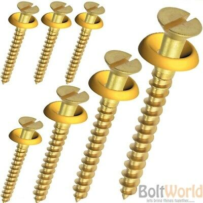 Solid Brass Slotted Flat Head Countersunk Wood Screws Woodscrews + Cup Washers