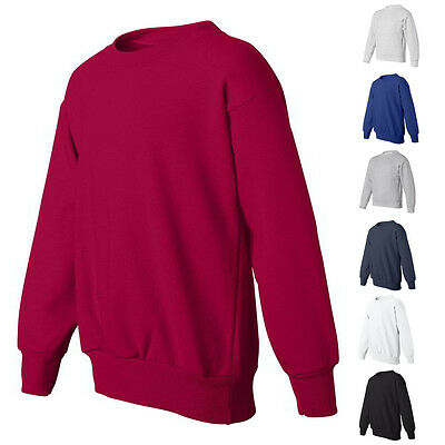 Hanes ComfortBlend Kids Boys Girls EcoSmart Youth Sweatshirt P360