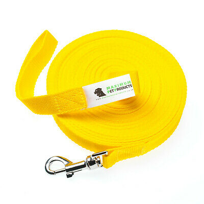 100ft Yellow Dog Lead & Horse Training Leash. 30m long 25mm Wide Webbing Clip