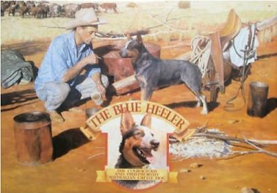 Australian Heritage Series Blue Heeler Dog Stockman Farm Tin Sign