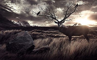 ANIMALS DEER SUNSET STUNNING LANDSCAPE Large Wall Art Canvas Picture 20x30""