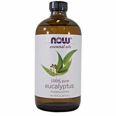 NOW FOODS Eucalyptus Essential Oil 16 OZ BIG BOTTLE FREE SHIPPING