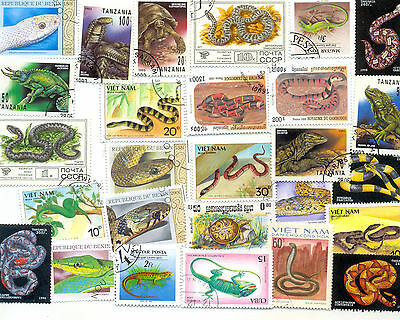 Reptiles-50 all different stamps(one or two newts)colourful.