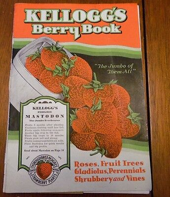 Kellogg's Berry Book, 1931, Pedigree Strawberry, Includes Fold-Out, Some Color