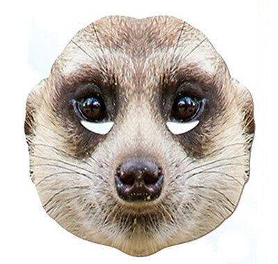 Meerkat Animal 2D Card Party Face Mask Fancy Dress Up Zoo Exotic Theme