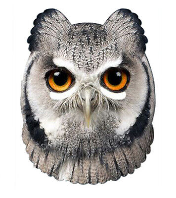 Owl Animal 2D Card Party Face Mask Fancy Dress Up Bird Zoo theme
