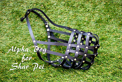 Light Leather Dog Muzzle for Shar Pei