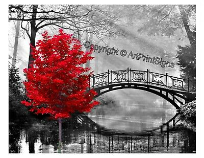 Red & Gray Home Decor Wall Art Photo Print Tree B&W Bridge Matted Bedroom Pic.