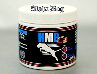 Bodybuilder dog supplement HMB Ca. Help to rebuild muscle, help your pet recover