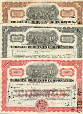 Tobacco Products Corporation   1920s 1930s Virginia Set of 8 stock certificate