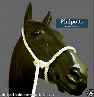 Traditional White Cotton Rope Showing Headcollar / Halter