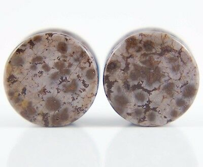 """1 Pair 11//16/"""" 18mm Ear Saddle Flared Plugs Picasso Picture Jasper Stone ML18A"""