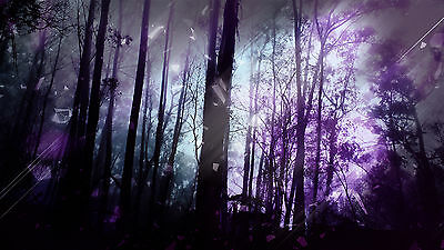 """STUNNING PURPLE ABSTRACT FOREST TREES Wall Art Large Canvas Print 20""""x30"""""""