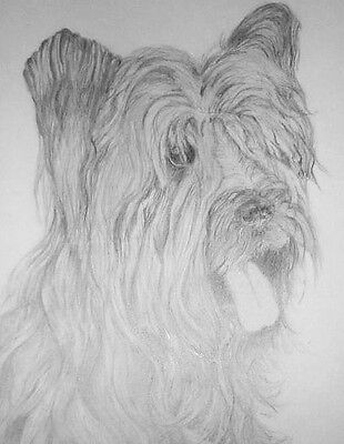 "Drawing Dog ""NOT A PRINT"" Dogs Puppy Puppies Pet Pets Handmade OOAK!"