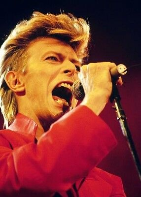 David Bowie  10x 8 UNSIGNED photo - P170 - Oh! You Pretty Things & Golden Years