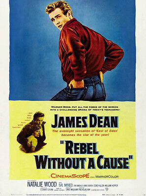 Rebel Without A Cause ‏ 10x 8 poster photo - P504 - James Dean & Natalie Wood