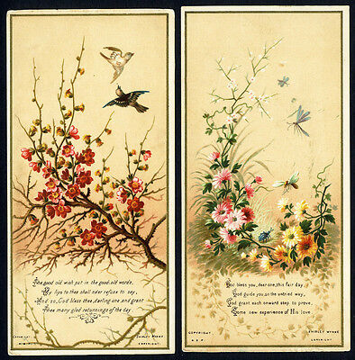 2 FLORAL Cards c 1890's by Shirley Wynne - Flowers Blossoms Birds and Bugs