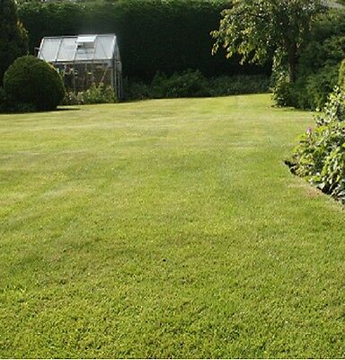 HARD WEARING LAWN GRASS SEED 10KG - BACK LAWNS & PLAY AREAS (Defra Reg. 7130)