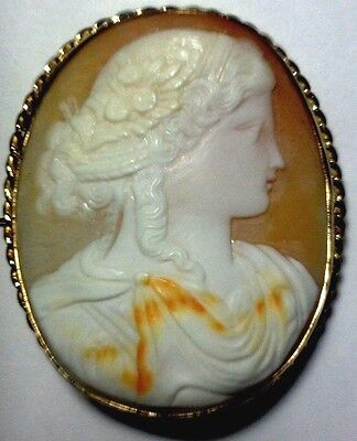 Victorian Cameo Depicting A Roman Style Lady Set On14 Kt Gold Hand Made Frame