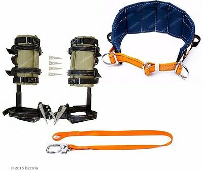 Tree Climbing Spike Set, Safety Belt, Safety Lanyard /arborist spurs gaffs