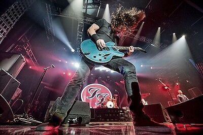 Foo Fighters Dave Grohl 8X11 Live Photo Poster Album Art Picture Decor 018
