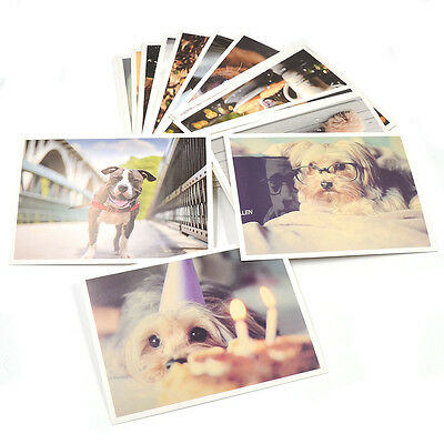 Cute Dogs Puppy Printed Postcards Photo Greeting Card Travel Gift 32pcs/Set New
