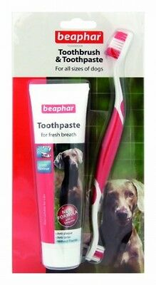 Beaphar Toothbrush And Toothpaste Kit - Fresh Breath For Dog 100G Free P&p