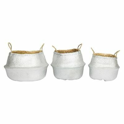 NEW Casa Uno Foldable Grass Belly Basket, Silver (Set of 3)