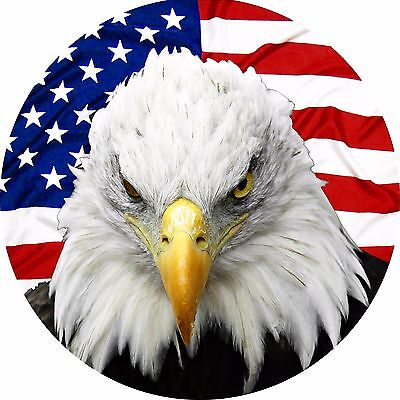 Eagle #6 with American Flag for Jeep, RV, trailer and more (all sizes available)