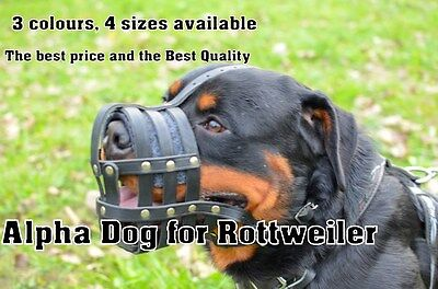 Strong Real Leather Muzzle for Rottweiler etc. Ideal for Training