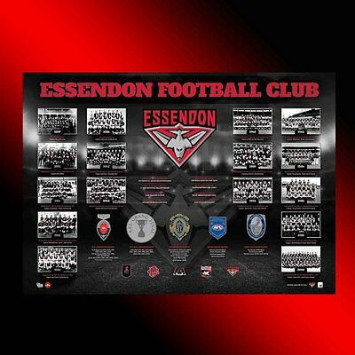 The Premiership History Essendon Bombers Official Afl Premiers Print Brownlow