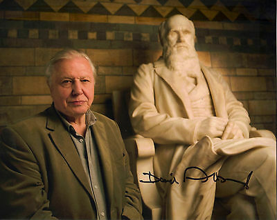 "STUNNING COLOUR 10"" x 8"" PHOTOGRAPH (COA) SIGNED ""TTM"" BY SIR DAVID ATTENBOROUGH"
