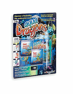 Aqua Dragons - Refill Pack New Eggs and Food Aquatic Sea Creature Pet