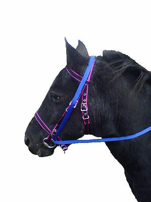 Official Libby's Grass Reins from saddle to the bit & over the head (both sides)