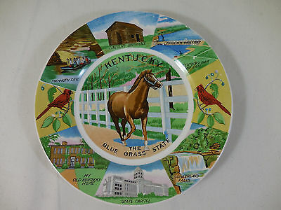 Vintage Souvenir Plate Kentucky The Blue Grass State Cardinal Horse Mammoth Home